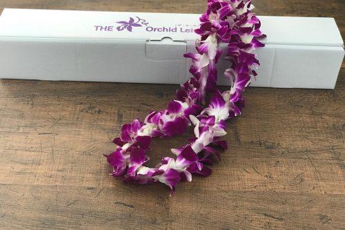 ハワイアンレイ(スタンダードレイ)SNG-01(紫)メイン
