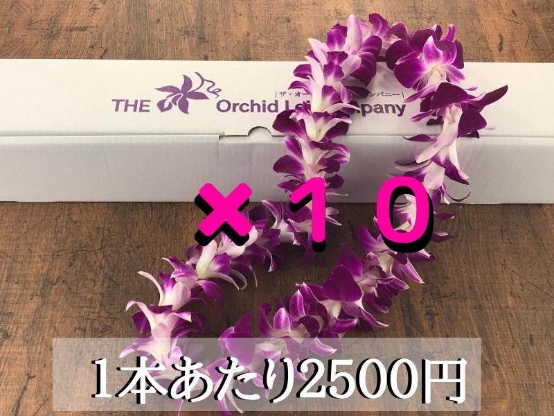 画像1: ハワイアンレイ(スタンダードレイ)SNG-01(紫)10本セット (1)