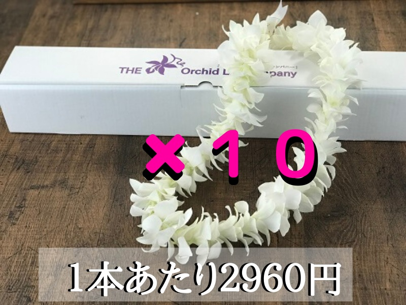 画像1: ハワイアンレイ(スタンダードレイ))SNG-02(白)10本セット (1)